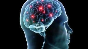 nootropic hjerne
